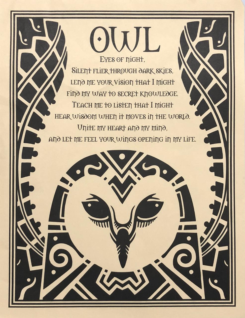 Owl Prayer Poster Image